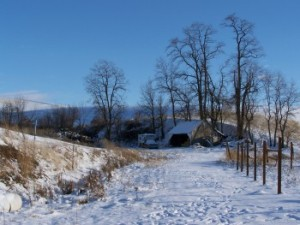 Picture of part of the ranch under snow.