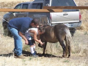 Picture of young boy learning to hoof pick with session leader.